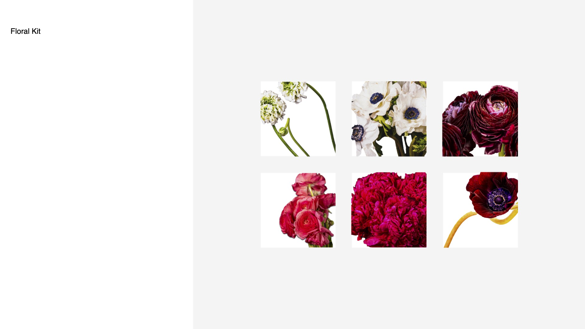 Birch Guidelines_Floral